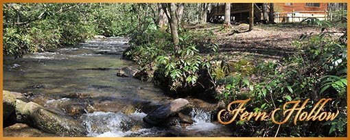 Fern Creekside Cabin Rental Murphy North Carolina